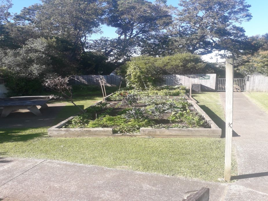 Meadowbank Community Centre - Backyard garden