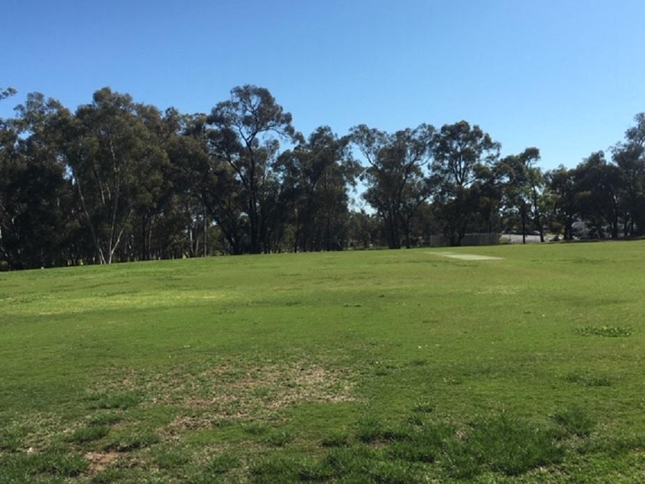 Strathdale Park Sports Grounds Rodda Oval