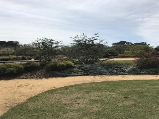 Garden for the Future Australian Gatering Space