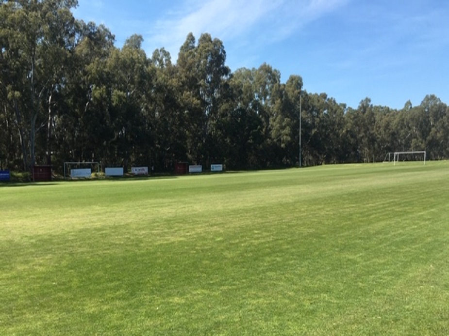 Stanley Avenue Pitch 1