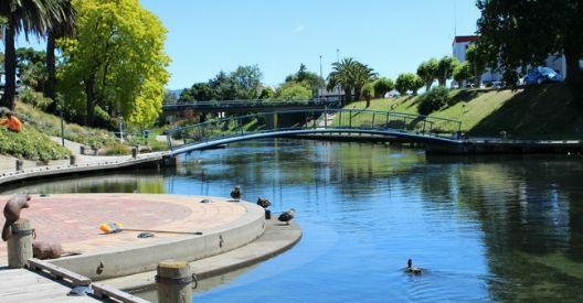 Riverside Park Reserve