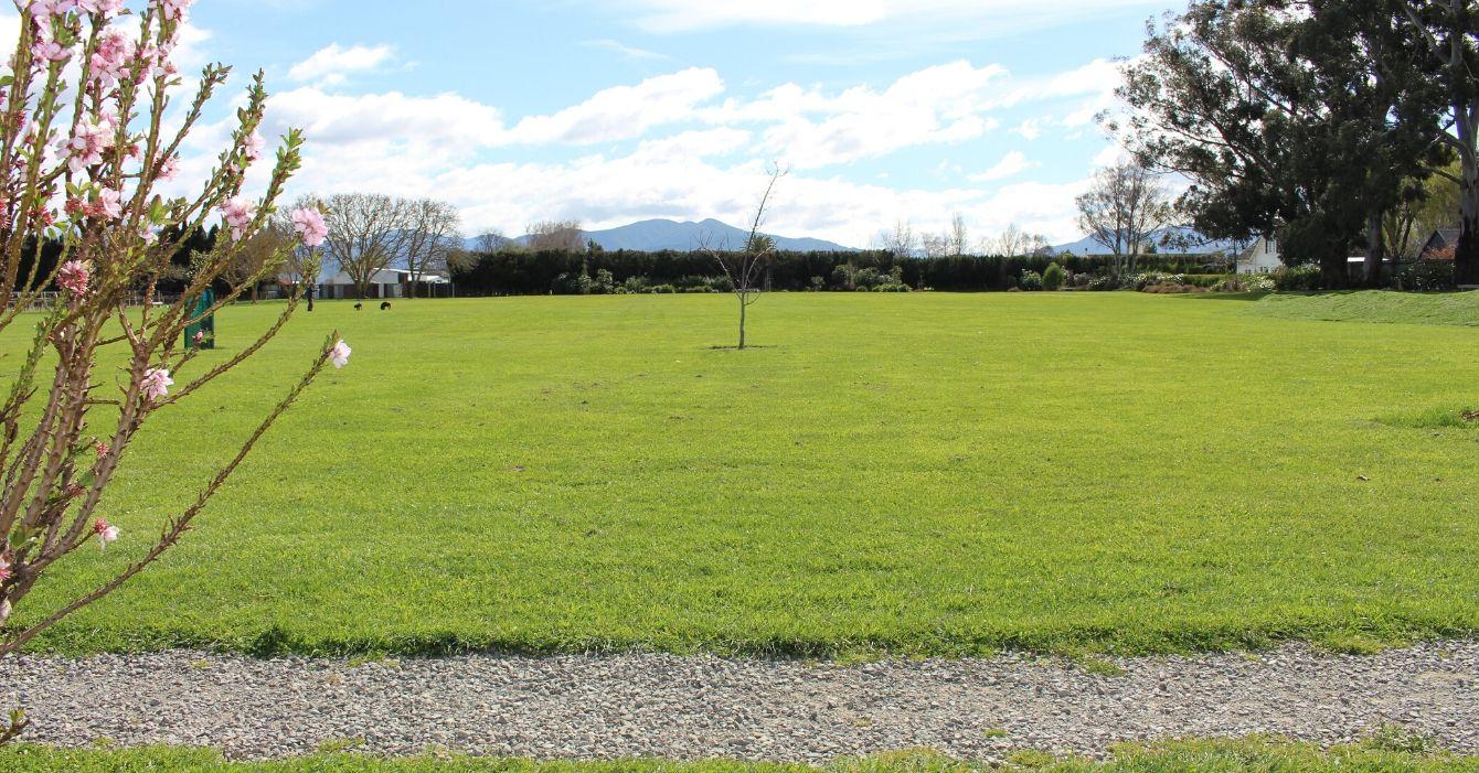 Sheps' Park