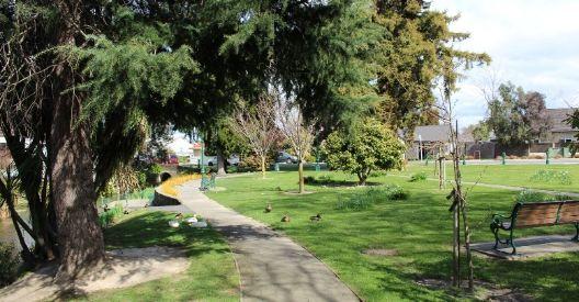 Springlands Green Reserve