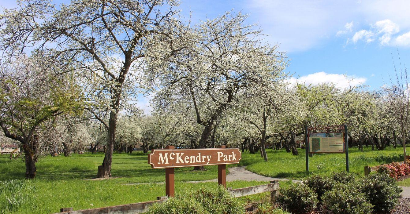McKendry Park