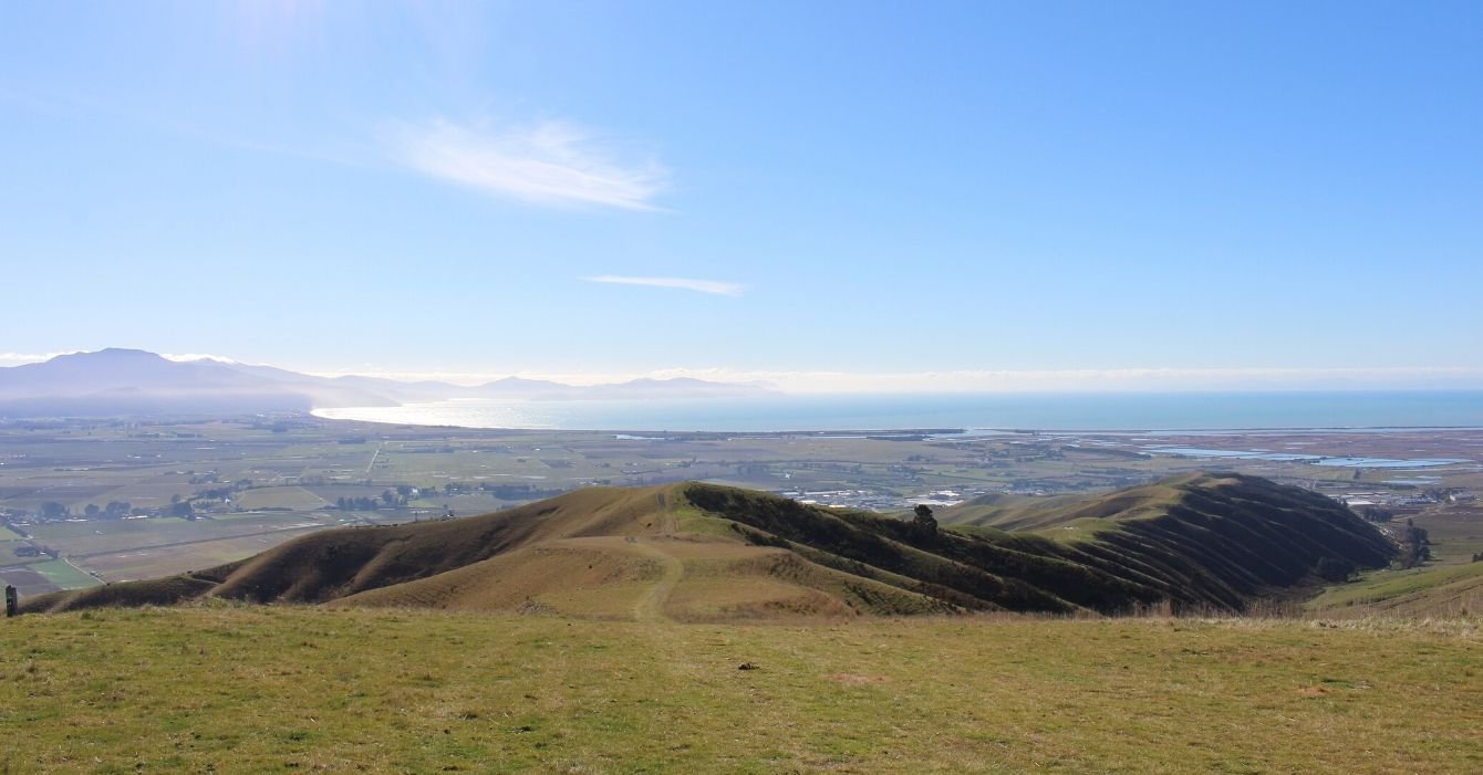 Wither Hills Reserve