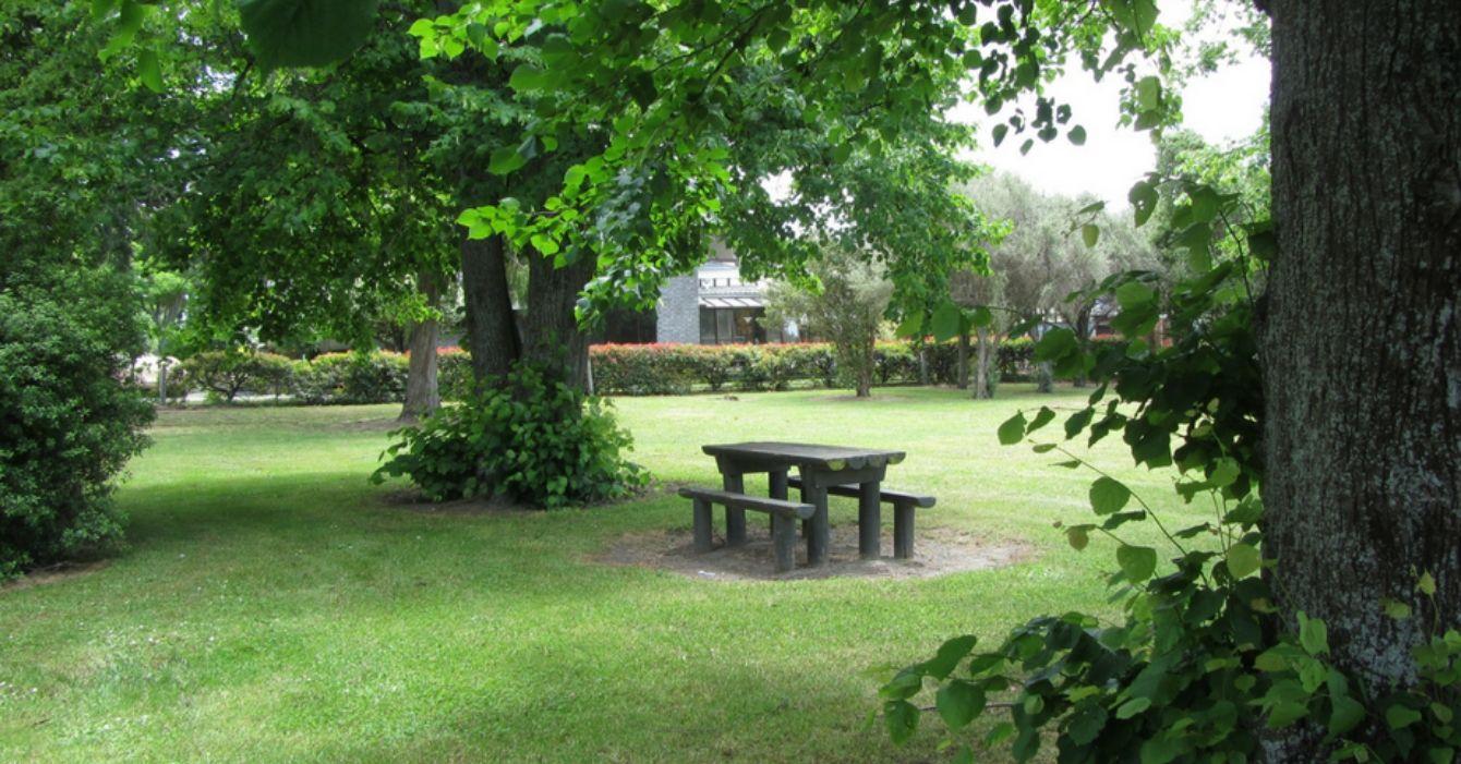 Burleigh Park Reserve
