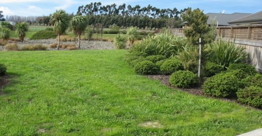 Camborne Green Reserve