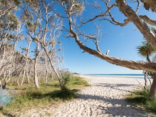 Home Beach Foreshore