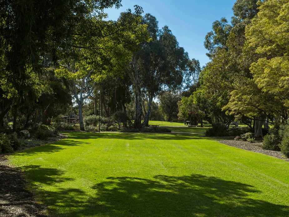 Neil McDougall Park