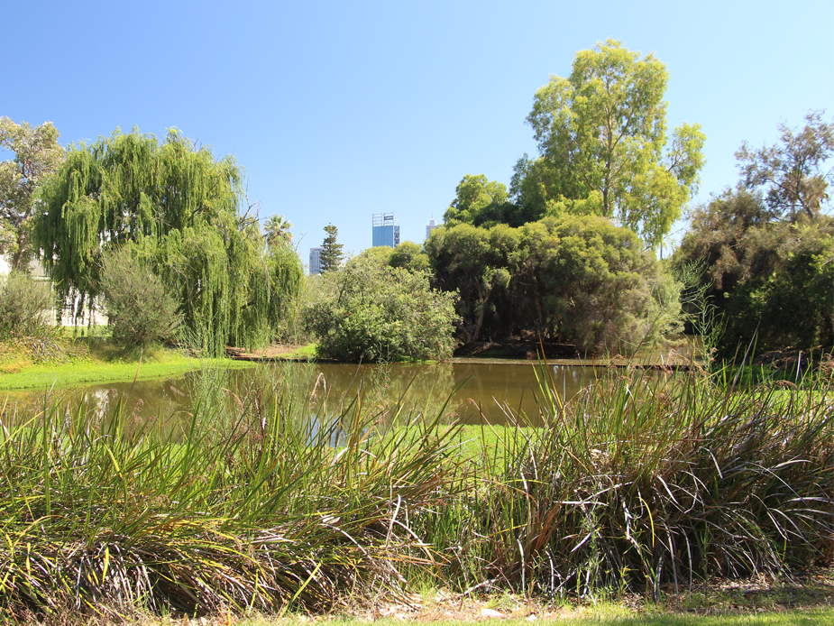 Clydesdale Reserve lake