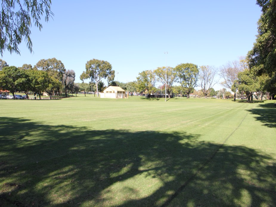 Playing field south view