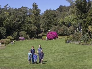 Main Lawn Family